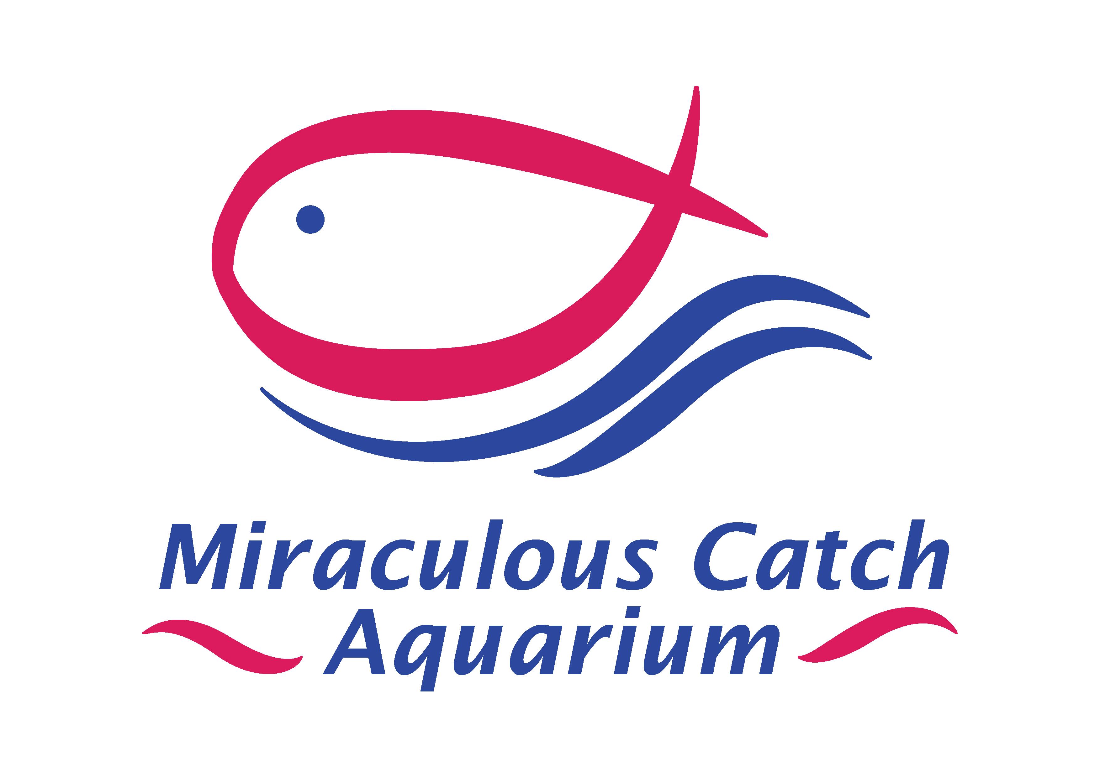 Miraculous Catch Aquarium